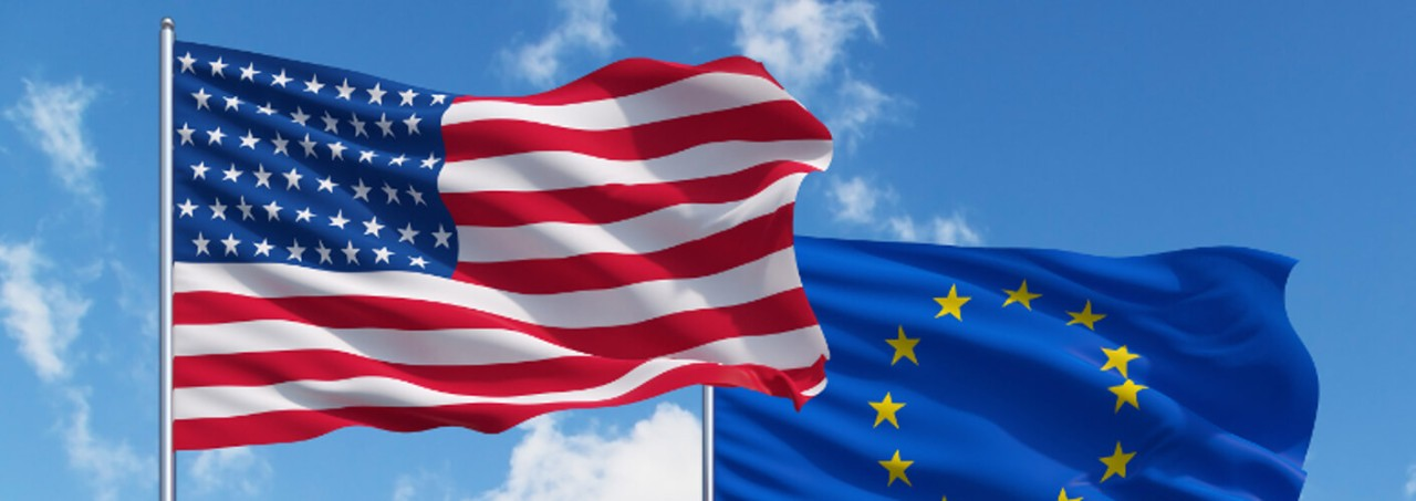 Is It Wise To Import Comparator Drug From The EU To The USA?